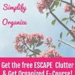 How to Declutter, Organize & Simplify E-Course {it's free!}