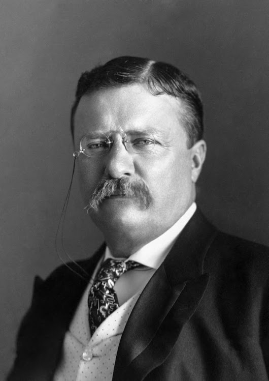 Can Donald Trump be the New Teddy Roosevelt? | Norville Rogers