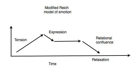 Modified Reich model Jpeg