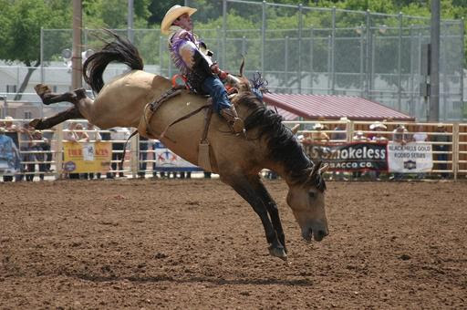 Deadwood rodeo 1.jpg