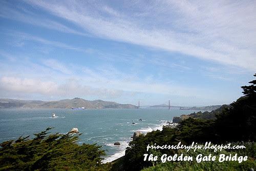 golden gate bridge view from presideo
