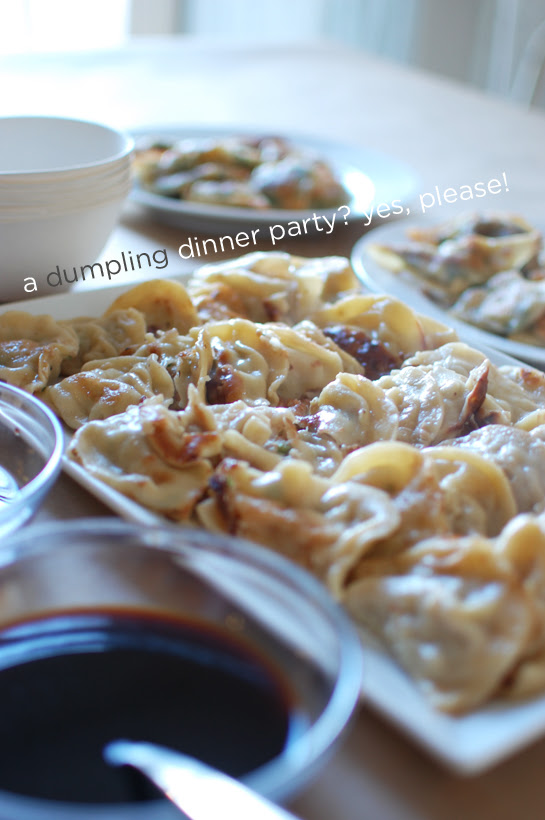 dumpling dinner party