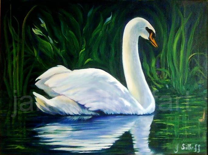 Magestic Swan
