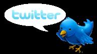 Twitter Logo and Bird