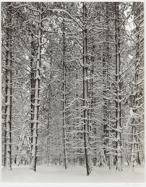 Ansel Easton Adams | Winter Yosemite Valley | The Metropolitan Museum of Art