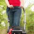 Tune Up Your Mower for Spring -