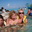 The Stingray Photobomb to End All Stingray Photobombs