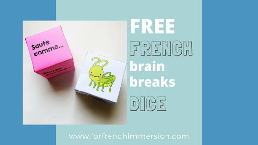 French Brain Break Dice: insects and ocean animals - For French Immersion
