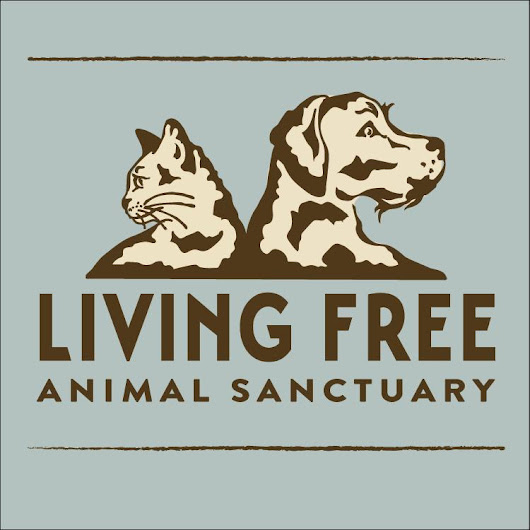 Living Free Animal Sanctuary nonprofit in Mountain Center, CA | Volunteer, Read Reviews, Donate | GreatNonprofits
