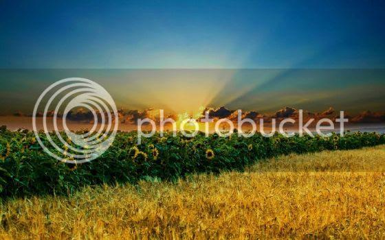 photo hd_wallpaper_1410-620x387.jpg