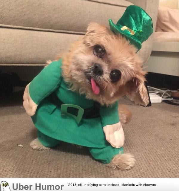 Just Something Funny Happy St Patricks Day