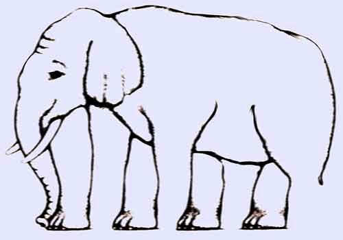 Το πρώτο γηροκομείο για ελέφαντες ειναι γεγονος