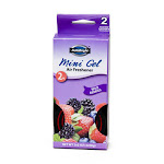Regent Products 3053 Air Freshener Wild Berries - Pack of 24