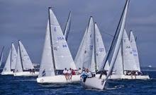 J/70s sailing Tampa Bay Quantum series