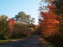 Fall 2001 on Rt. 13 in NYS