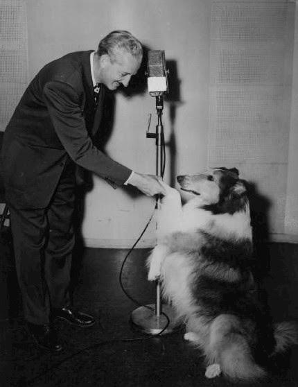 http://upload.wikimedia.org/wikipedia/commons/6/61/Lassie_Radio_program_NBC.JPG?uselang=fi