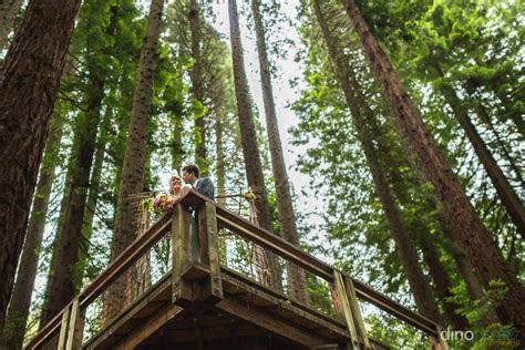 The Wedding at the Hoyt Arboretum?s Redwood Deck Portland