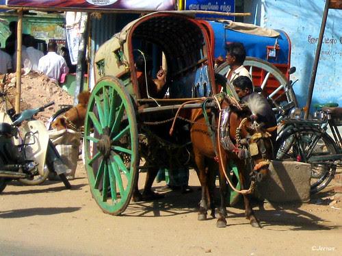 Periyakulam Horse Cart