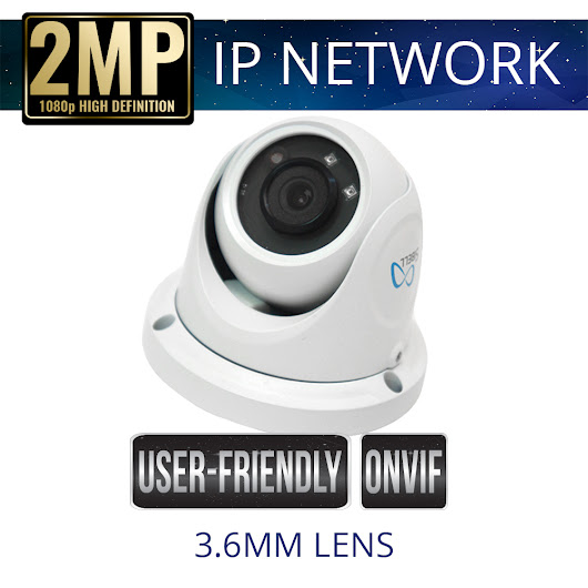 2mp IP Network Eyeball Dome Security Camera