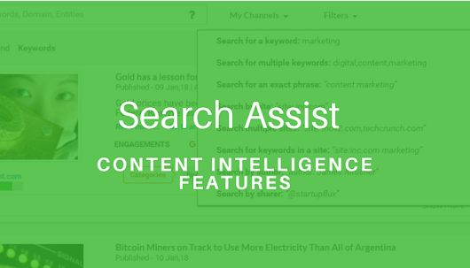Features: Search Assist