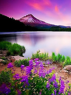 Nature Scenery Beautiful Nature Images For Mobile
