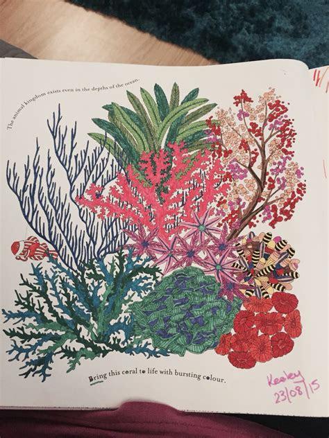 coral reef  millie marottas animal kingdom colouring