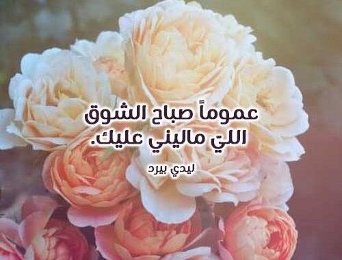 صباح الشوق تويتر Makusia Images