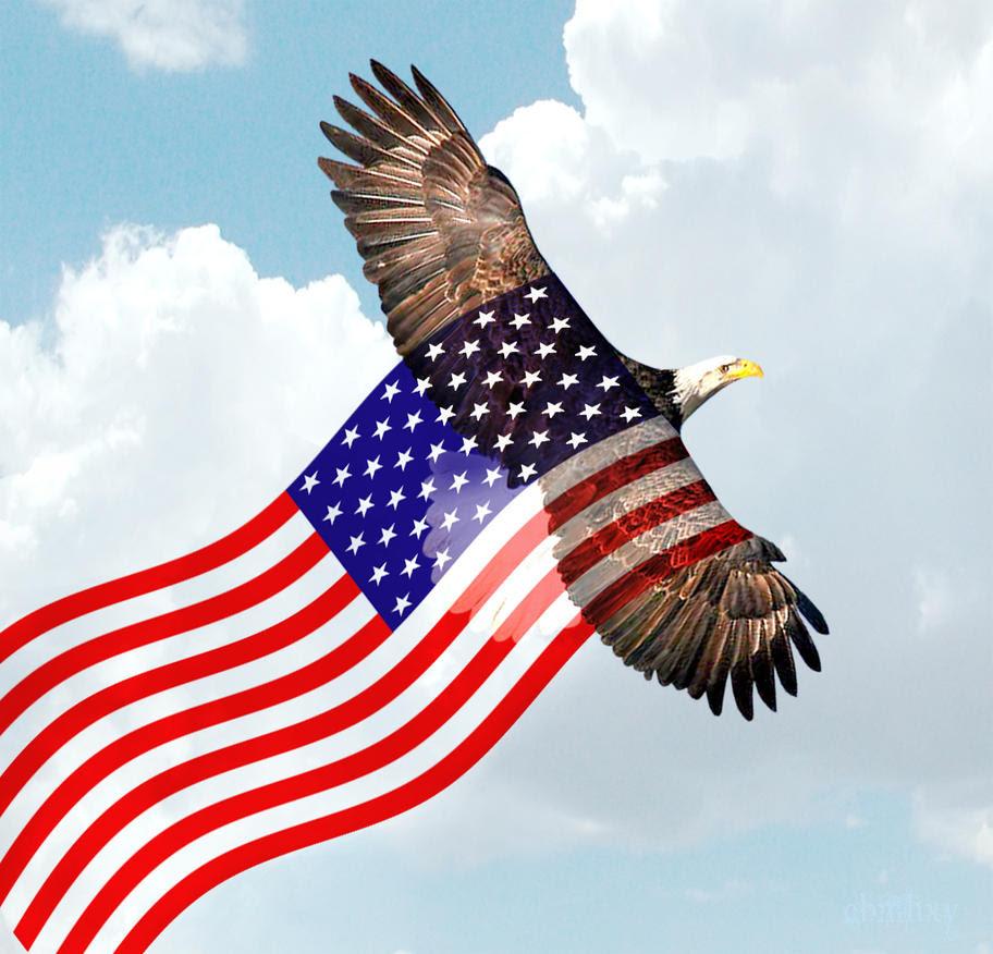 20 Bald Eagles Who Love America Eagle With American Flag Mask Guff