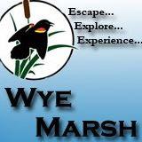 wye marsh