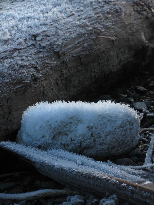 frosty piece of debris on the beach, Kasaan, Alaska