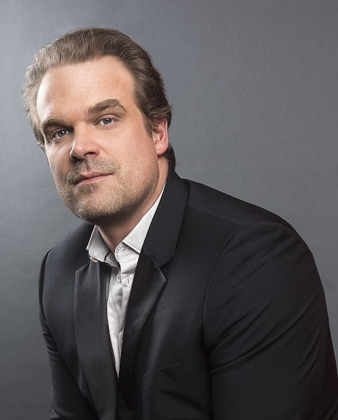 David Harbour Movies And Tv Shows
