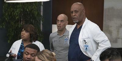 Grey's Anatomy Temporada 14 - AdoroCinema