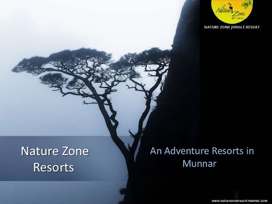 Resorts in Munnar - Nature Zone