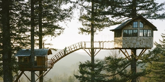 Man Quits Job And Builds Dream Treehouse Complete With Hot Tub And Skate Park