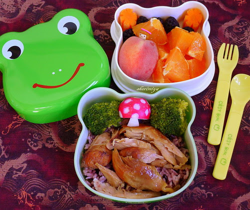 Shoyu Chicken and Rice Frog Bento by sherimiya ♥