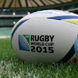 Is your holiday home ready for the Rugby World Cup?