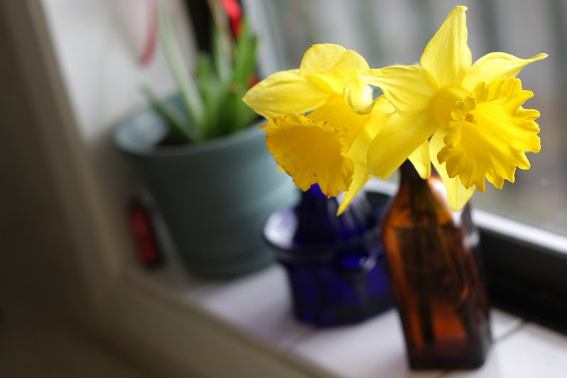 spring in our home!