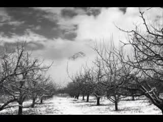 Kış Baba Izle Video Eğitim Bilişim Ağı