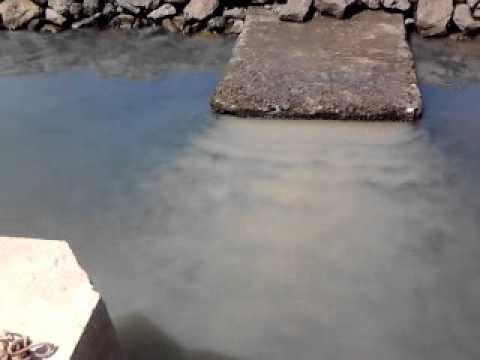 Image result for fotos dos esgotos em OLhão para a Ria Formosa