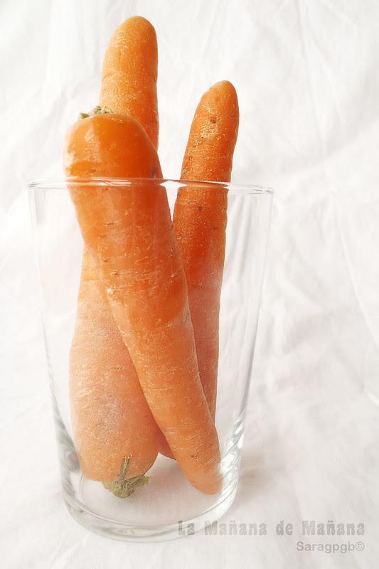 Z- Zanahoria