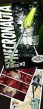Necronauta #7 - Edição grátis online