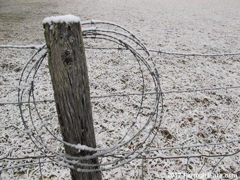 Snowy farm morning 4 - FarmgirlFare.com