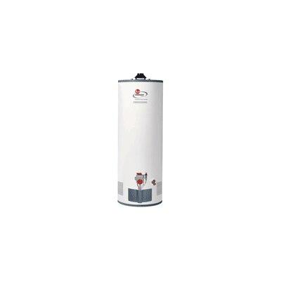 Water Heater Price List Best Price Rheem Rhgpro50 40f N A