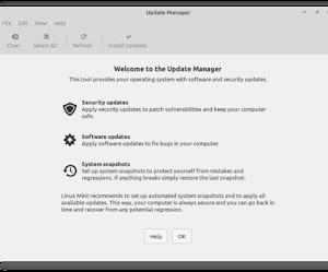 Gli utenti Linux Mint hanno un problema con gli aggiornamenti