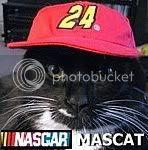 mascat