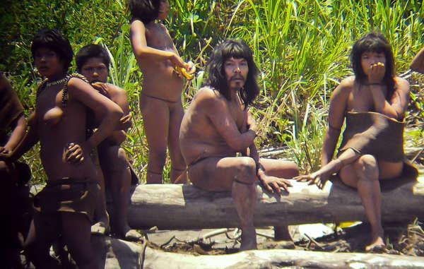 Les photos des Indiens isolés que nous diffusons aujourd'hui n'ont jamais été aussi précises.