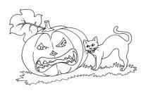 Coloriage Chat Noir Halloween Coloriage De Sorcieres D