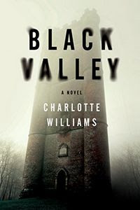 Black Valley by Charlotte Williams