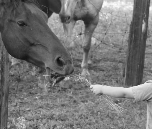 Sharing- photo by Justine Taylor