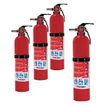 First Alert 2.5 lb ABC Standard Multipurpose Home Fire Extinguisher, 4